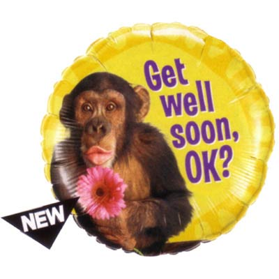 Get Well Soon OK with Monkey