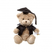 Small Graduation Bear 15 cm