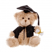 Large Graduation Bear 25cm